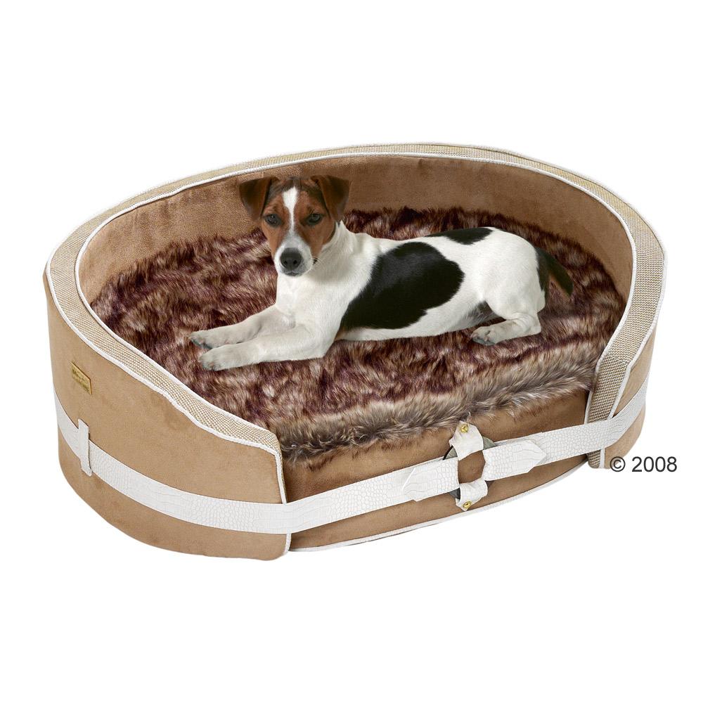 Panier orthopedique pour chien for Barbie chien piscine