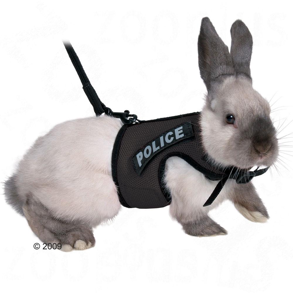 Шлейка для кролика выкройки