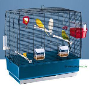 combient de perruches pour cette cage ? 5278_1