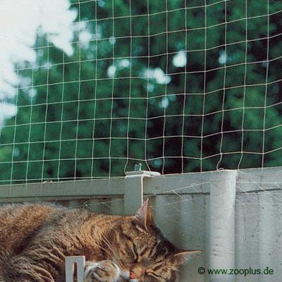 D fenestration protegez vos fen tres et balcons for Protection fenetre chat