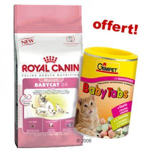 93358_royal_canin_gimpet_chaton_1