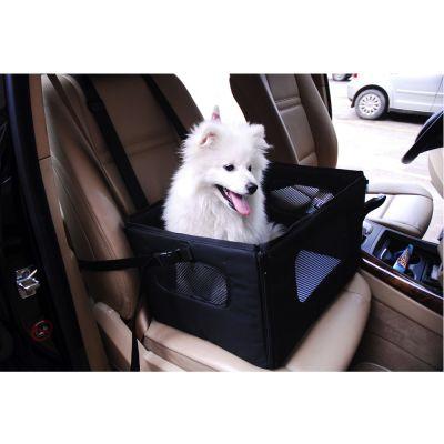 accessoires pour chien voyage