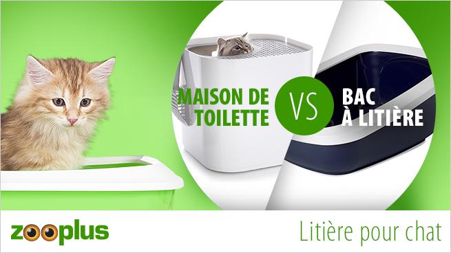 comparatif entre les maisons de toilette et les bacs à litière pour chat