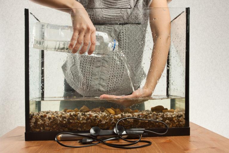 un aquariophile remplit son aquarium d´eau