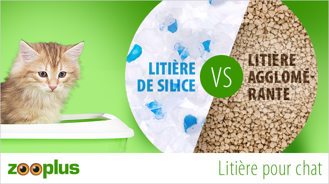 litière pour chat silice aggolmérante