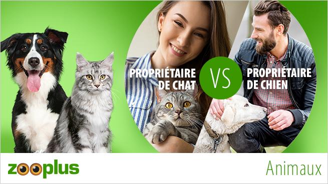 Propriétaire de chat VS propriétaire de chien