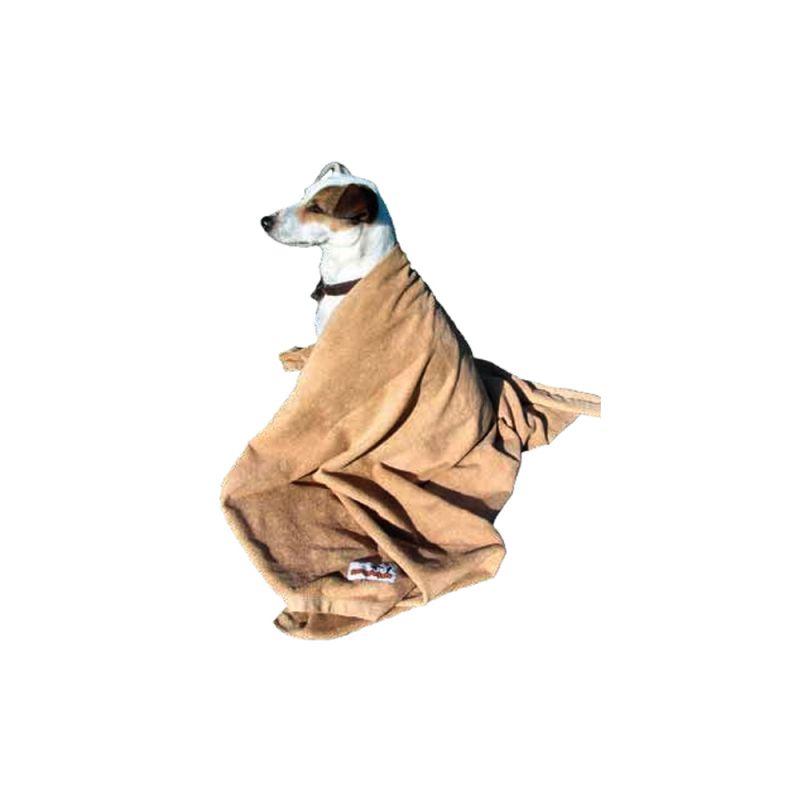 Chien couché sous une serviette marron, fond blanc