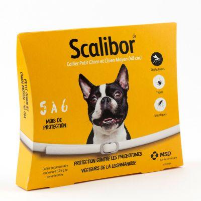 accessoires pour chien scalibor