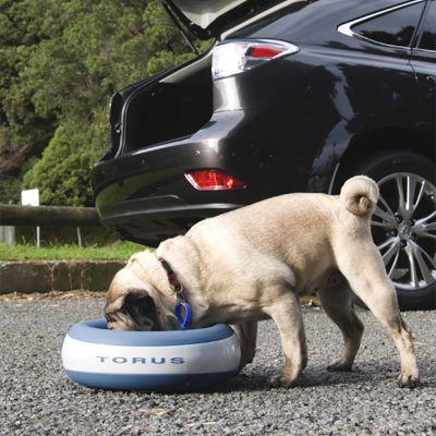 accessoires pour chien fontaine à eau
