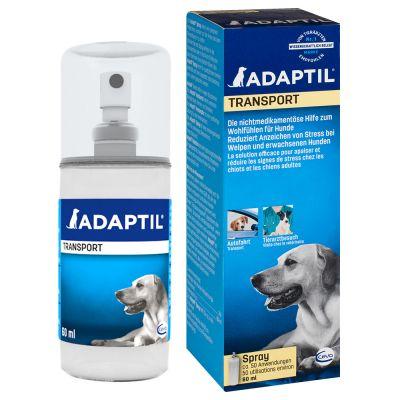 accessoires pour chien adaptil