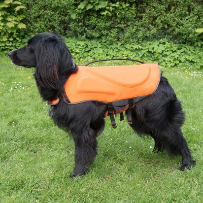 accessoires pour chien gilet de sauvetage