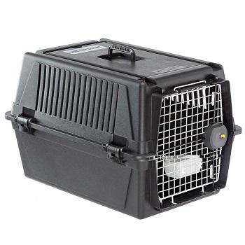 cage ferplast pour chien