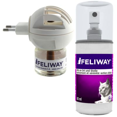 accessoires pour chat feliway