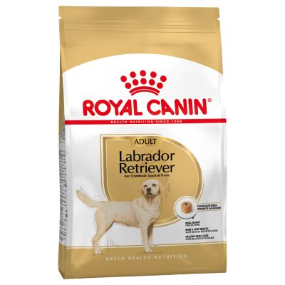 Royal Canin Breed Labrador Retriever Adult pour chien