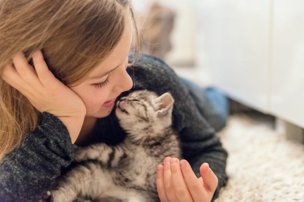 Petite fille qui joue avec une chaton rayé gris