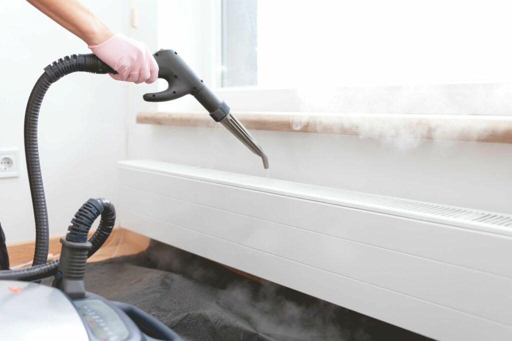 pour traiter les acariens chez le chien, mieux vaut nettoyer votre logement