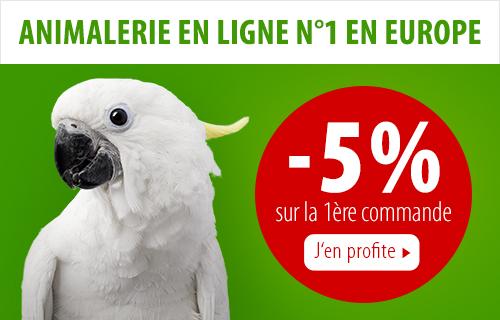 Découvrez tous les produits pour oiseaux sur la boutique zooplus