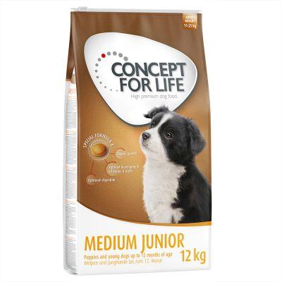 croquettes concept for life medium junior adaptées aux jeunes beagle