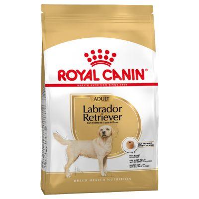 Paquet de croquettes Royal Canin pour labrador retriever adulte