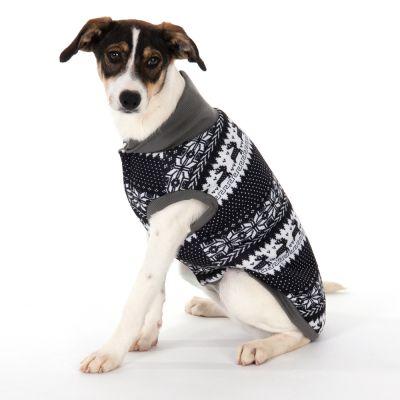 chien portant un pull norvégien