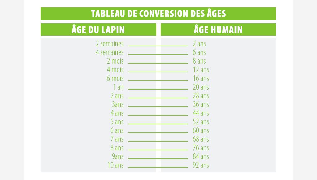 âge des lapins en âge humain