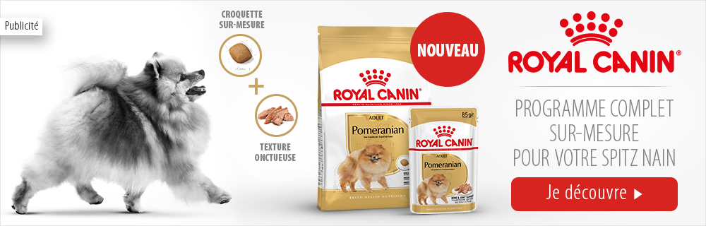 Royal_Canin_breed_spitz_nain_03052021
