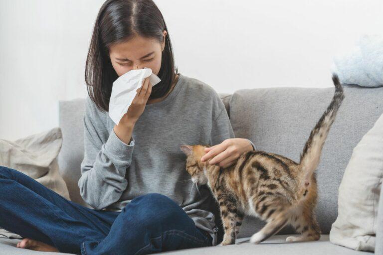 femme allergique aux chats