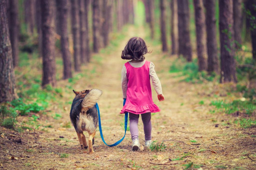 les chiens rendent nos vies meilleures